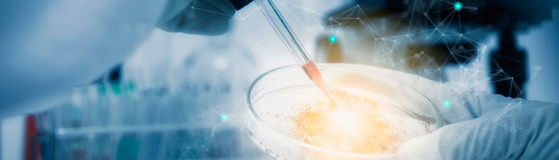 Imagen Placa de Petri. Terapia de regeneración articular con acido hialurónico